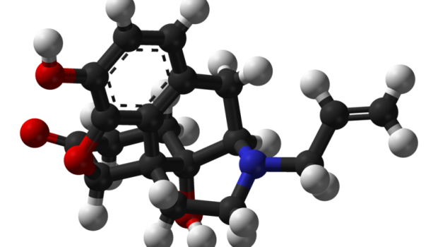 Tag med hjem Naloxone – Om retten til at lade stofbrugere bekæmpe overdoser Se HCLU's nye engelsksprogede video om Naloxone ordination, den bedste måde at bekæmpe opiat overdoser. More information: […]