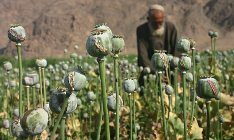 Former UK ambassador to Afghanistan calls for legalisation of drugs. Sir William Patey acknowledges west's failure to eradicate poppy crops in Afghanistan as he calls for state-regulated drug trade. By Ewen […]